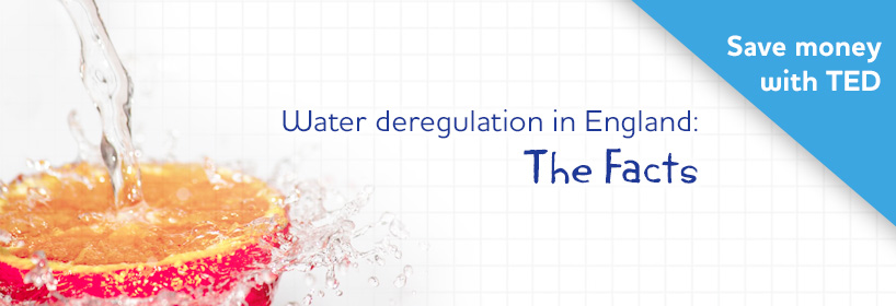 Water deregulation in England: The Facts